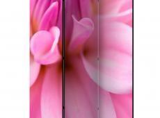 Paraván - Flower petals - dahlia [Room Dividers]